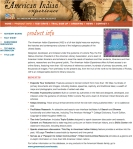 AMERICAN INDIAN MARKETING SITE DOWNPAGE